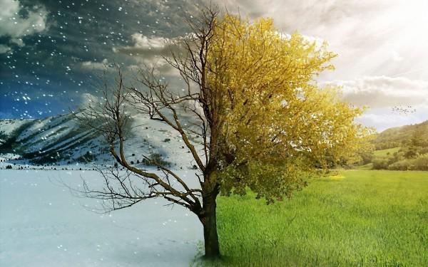 Регулировка доводчика производится при смене сезонов года
