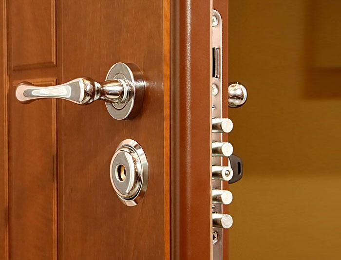 двери для входных дверей